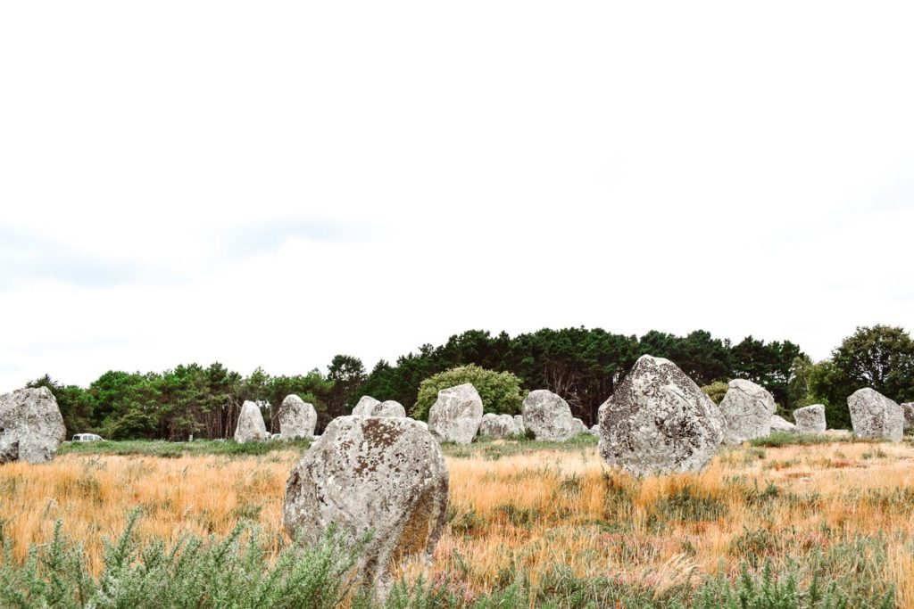The stones in Carnac from our train stour At Des Menhirs Campsite in Carnac (1)