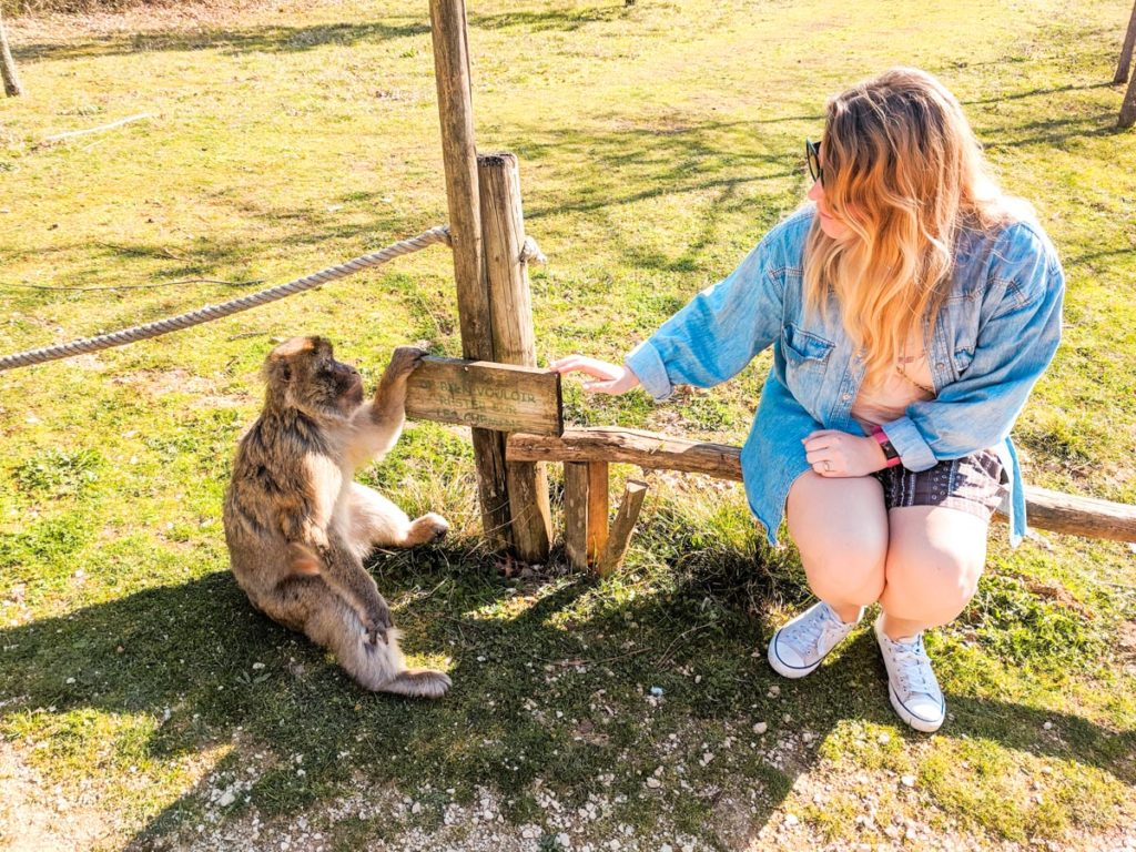 Valee de singe Breanne sat with a monkey from the monkey village near the Charente